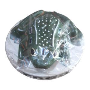 Frog Artificial Model on Board