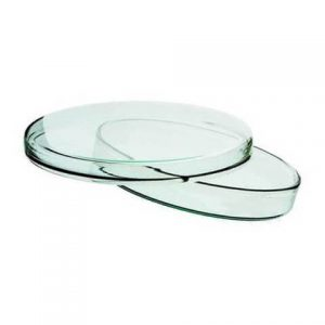 Glass Petri Dish 120 mm for Lab Use
