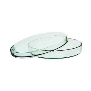 Glass Petri Dish 60 mm for Lab Use