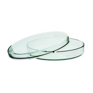 Glass Petri Dishes 90 mm for Biology Lab
