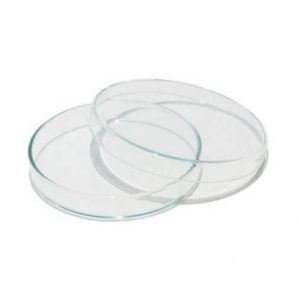 Plastic Petri Dishes 90 mm for Biology Lab